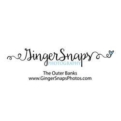 sponsor-gingersnaps